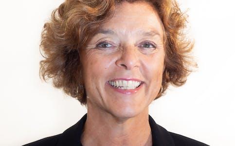 Lise Campbell Lehne er Seniorrådgiver i Ipsos Norge.